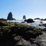 Cannon Beach 4